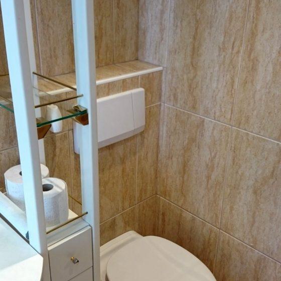 das an einer Vorwandschalung montierte Haenge-WC im Badezimmer wird durch das geschickt platzierte Regal verborgen, gleichzeitig bietet das Regal Stauraum fuer Reserve-Klopapier, Putzmittel...