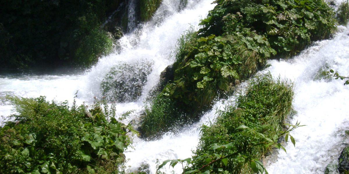 Wasserfall, der sich zwischen von Grünpflanzen überwucherten Felsen hinunterstürzt