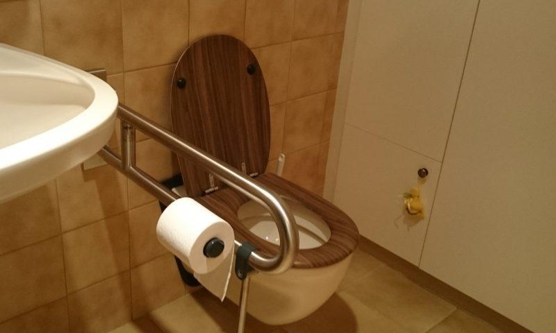 nachträglich montierter Stützklapp-Griff im WC mit Papierrollen-Halter nachträglich montierter Stützklapp-Griff