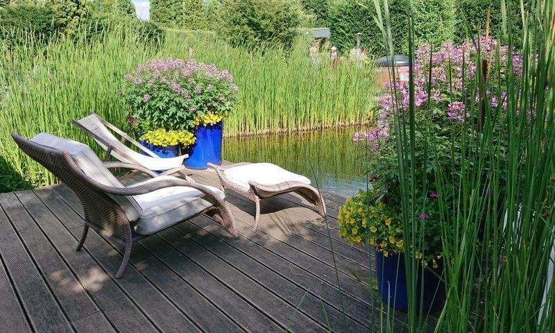 Liegestühle am Seerosenteich laden zur Erholung im Urlaub ein